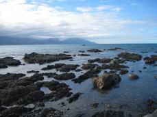 Kaikora shore, NZ