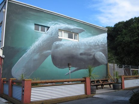 With an economy heavily reliant on tourism, many beautiful murals of whales and marine life can be found all over the town of Kaikoura.