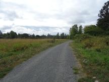 the main trail, Colquitz River Trail