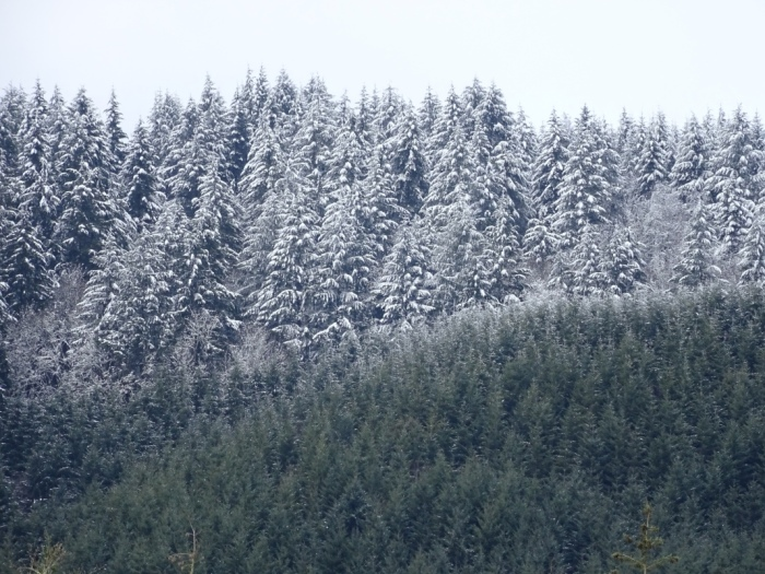 snowhills